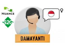 S2G + Damayanti Nuance Voice