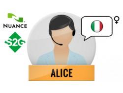 S2G + Alice Nuance Voice