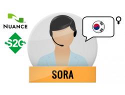 S2G + Sora Nuance Voice